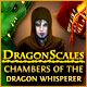 Download DragonScales: Chambers of the Dragon Whisperer game