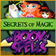 Download Secrets of Magic: The Book of Spells game