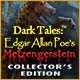 Download Dark Tales: Edgar Allan Poe's Metzengerstein Collector's Edition game