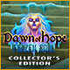 Dawn of Hope: The Frozen Soul Collector's Edition Game