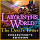Download Labyrinths of the World: The Devil's Tower Collector's Edition game
