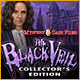 Download Mystery Case Files: The Black Veil Collector's Edition game