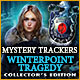 Download Mystery Trackers: Winterpoint Tragedy Collector's Edition game
