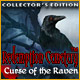 Download Redemption Cemetery: Curse of the Raven Collector's Edition game