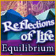Download Reflections of Life: Equilibrium game