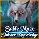Download Sable Maze: Sinister Knowledge game