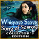 Download Whispered Secrets: Song of Sorrow Collector's Edition game