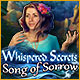 Download Whispered Secrets: Song of Sorrow game